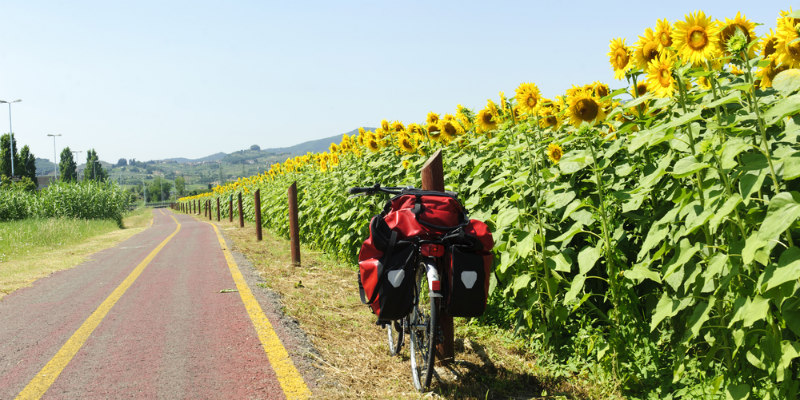 Bicicleta en girasoles