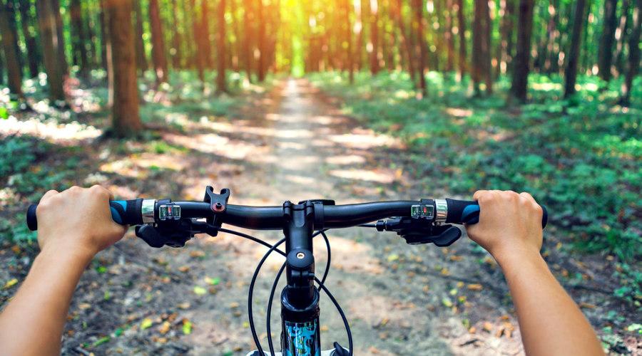 manillar de bicicleta de montaña