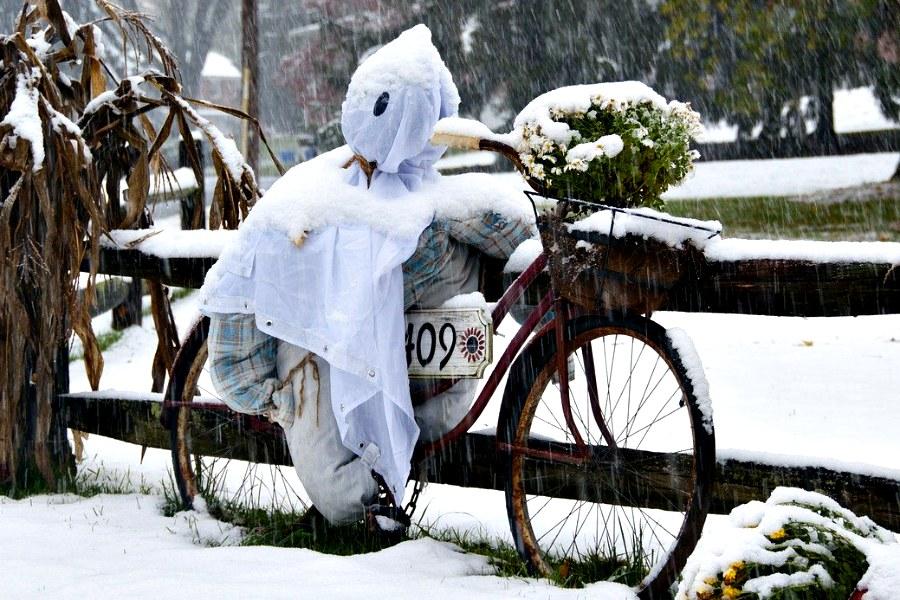 Bicicleta espantapájaros